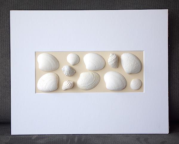 shells_white